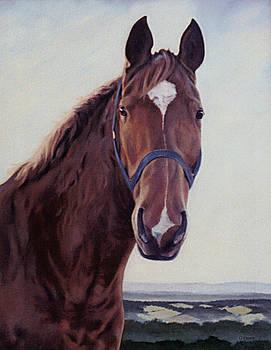 Majestic Roger- Chestnut Horse by Gillian Owen