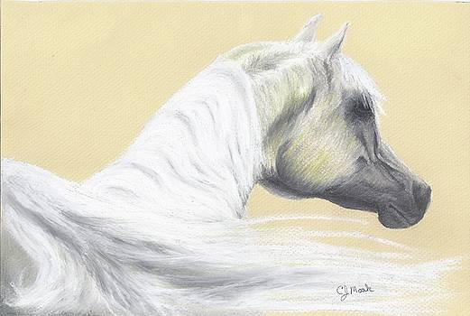 Majestic Senior by Caren Moak-khan