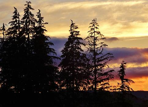 Majestic Sunset by David Frankel