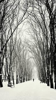 Majestic walk. Chernihiv, 2018. by Andriy Maykovskyi