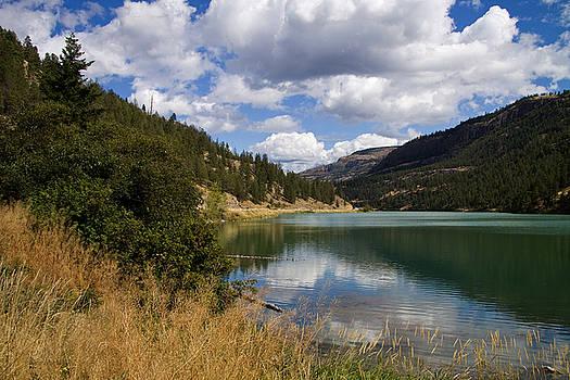 Majestic Yellow Lake by Carol Hathaway