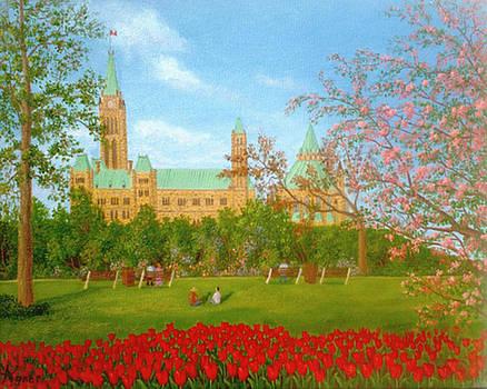 Major's Hill Park Tulips by Darlene Agner