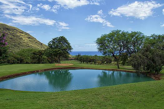 Makaha Valley Golf  by Debby Richards