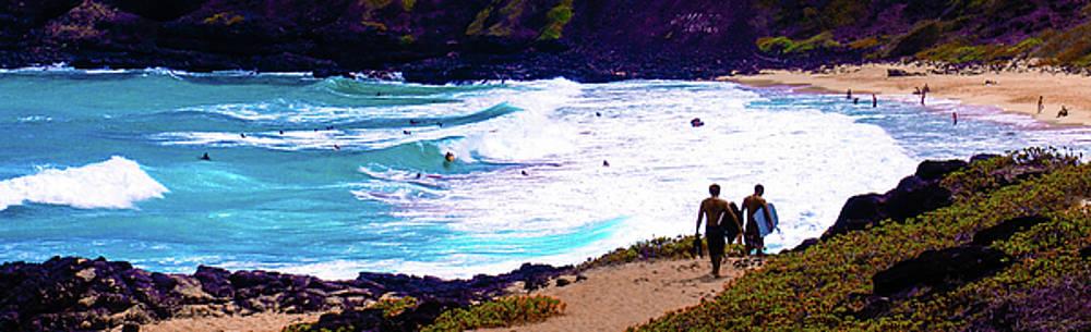 Panorama - Makapu'U Beach Park, Oahu, Hawaii  by D Davila
