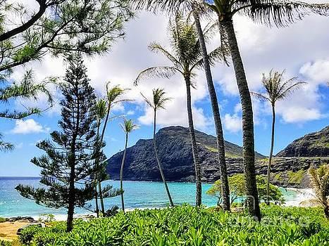 Makapuu Paradise by Kristine Merc