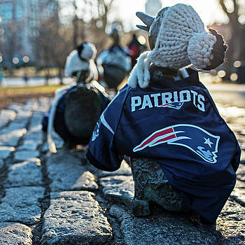 Toby McGuire - Make Way For Ducklings supporting the Patriots- Boston Public Garden Boston MA