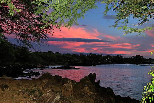 Makena in the Pink by JJ Preston