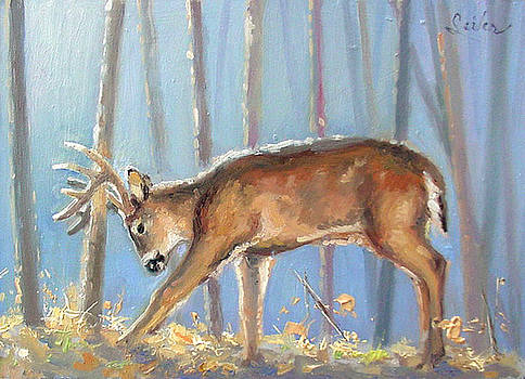 Making a Statement- Whitetail by Larry Seiler