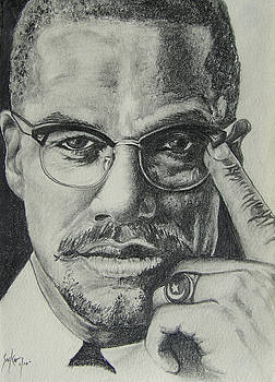 Malcolm X by Stephen Sookoo