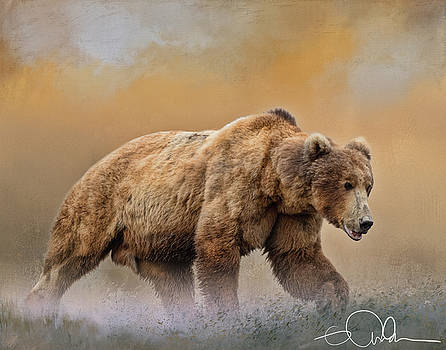 Male Brown Bear by Gloria Anderson