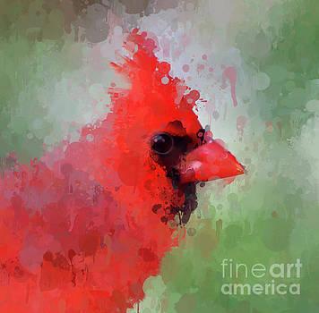 Male Cardinal - Paint Splatter by Kerri Farley