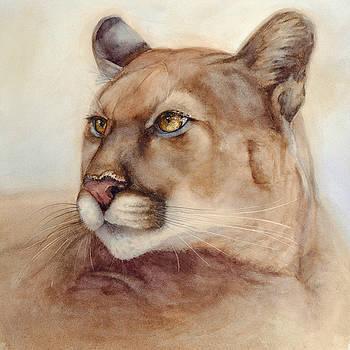 Male Cougar by Bonnie Rinier