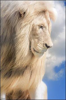 LeeAnn McLaneGoetz McLaneGoetzStudioLLCcom - Male Lion Dreams