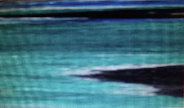 Malibu by Don Koester