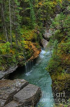 Wayne Moran - Maligne Canyon Falls Jasper National Park
