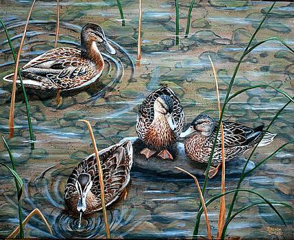 Mallards by Brenda Baker