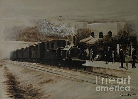 Malta Railway by Tony Calleja