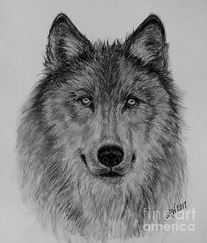 Mama Wolf by Michelle Wolff