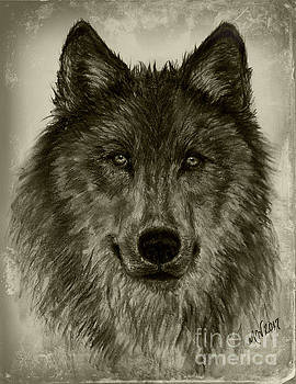 Mama Wolf Vintage by Michelle Wolff