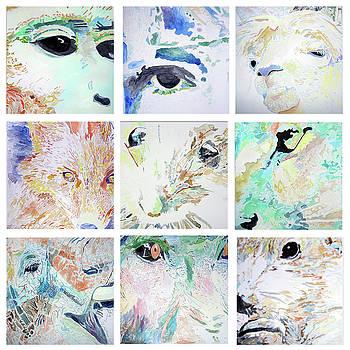 Mammals by Lea Cox