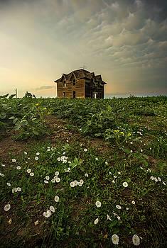 Mammatus and Flowers  by Aaron J Groen