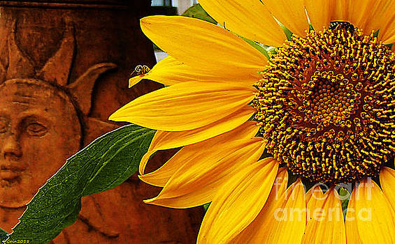 Mammoth Sunflower by Donna Cain