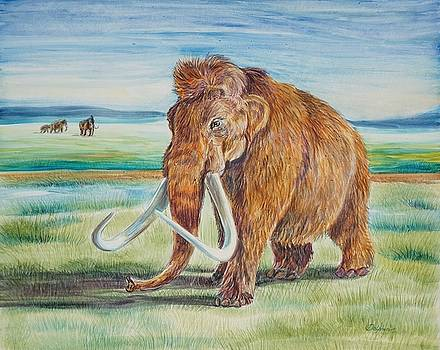 Mammoth by Gail Dolphin