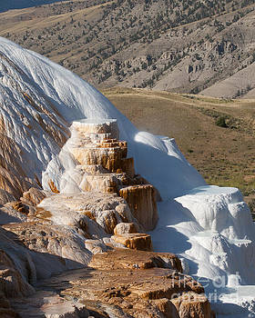 Mammoth Hot Springs  by DS Dodd