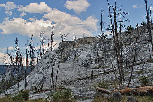 Charles Kozierok - Mammoth Hot Springs -- Upper Terraces