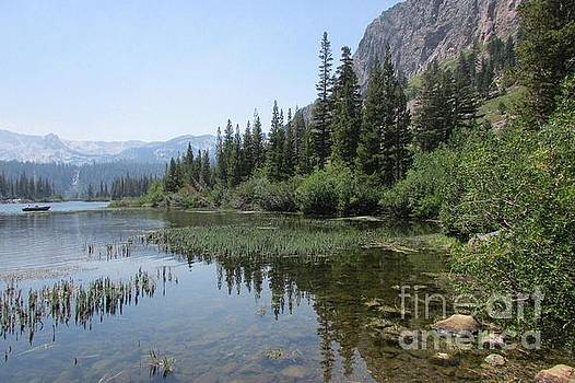 Mammoth Reflections by Catherine DeHart