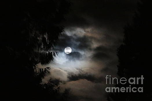 Man and the moon by Debra Kaye McKrill