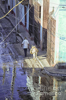 Patricia Hofmeester - Man with donkey on street Cuba