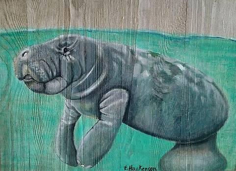 Manatee  Waters by Elaine Haakenson
