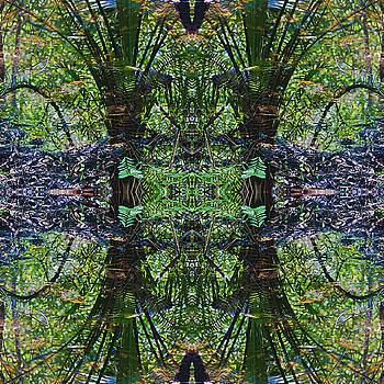 Mandala 02 by Gene Norris