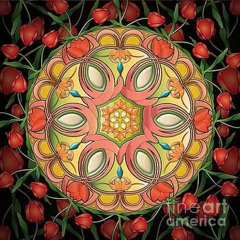 Bedros Awak - Mandala Tulipa
