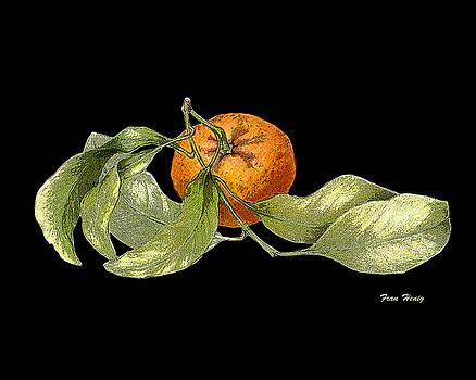 Mandarin orange II by Fran Henig