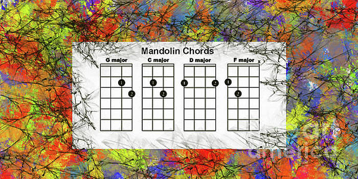 Mandolin- the basic chords by Trilby Cole