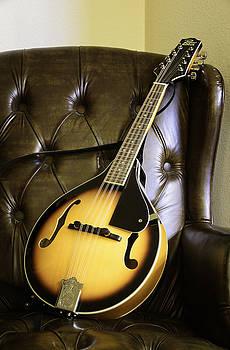 Mandolin by Thomas Chamberlin