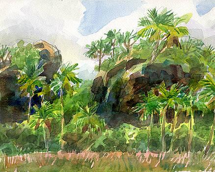 Judith Kunzle - Mangaia Cliffs