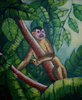 Mango Monkey by Jean Pierre Bergoeing