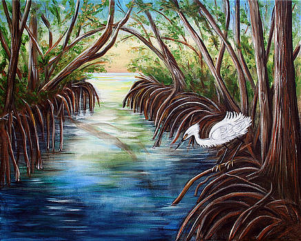 Dorothy Riley - Mangrove Morning