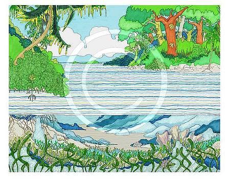 Mangrove by Ozy Kroll