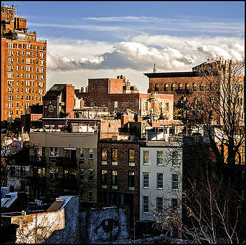 Manhattan From the Whitney by Frank Winters