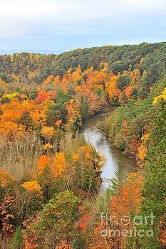Terri Gostola - Manistee River in Autumn