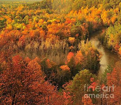 Terri Gostola - Manistee River Morning