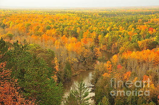 Terri Gostola - Manistee River Winding Through Autumn