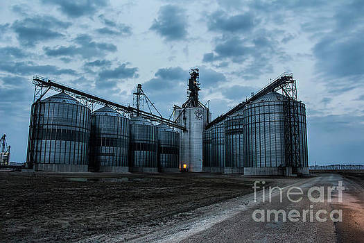 Manitoba Agriculture by Francis Lavigne-Theriault