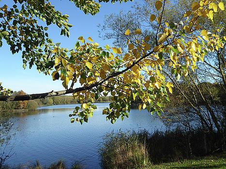 Manvers Lake 1 by Carol Lynch