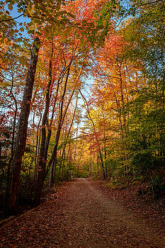 Many a Fall Colors by Dan Girard