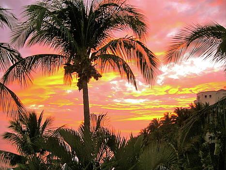 Manzanillo Magic by Patsy Walton